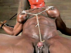 Muscled slave gets pain